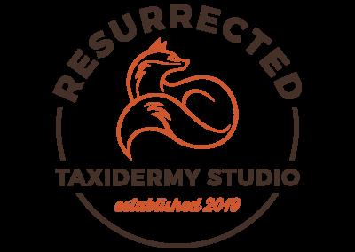 Resurrected Taxidermy Studio